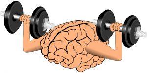 Build a Better Marketing Brain