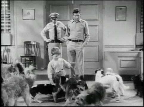 Make Heroes of Those Around You - Don't Be a Giraffe!  The Andy Griffith Show - Dogs, Dogs, Dogs.
