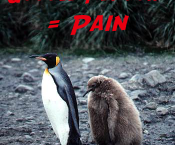 Google Penguin = Pain…